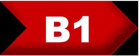 English level-B1