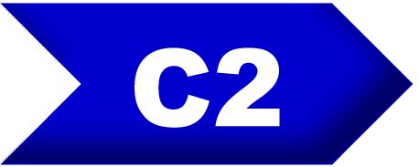 English level C2